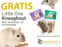 Gratis Proefmonster knaaghout snack Little One